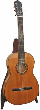 Modern classical guitars are descended from the Torres design