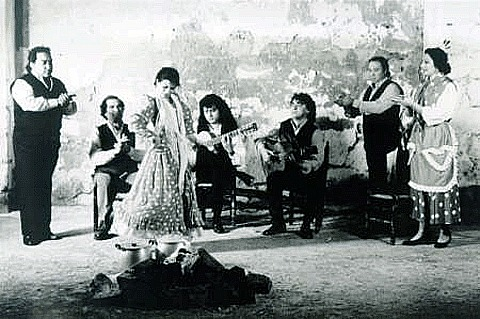 The Spanish dance and musical genre, flamenco